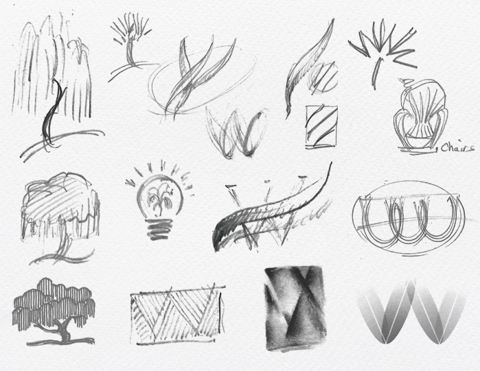 New Willow Logo Sketches