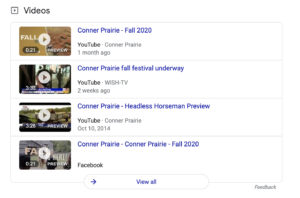 Video listings in search results